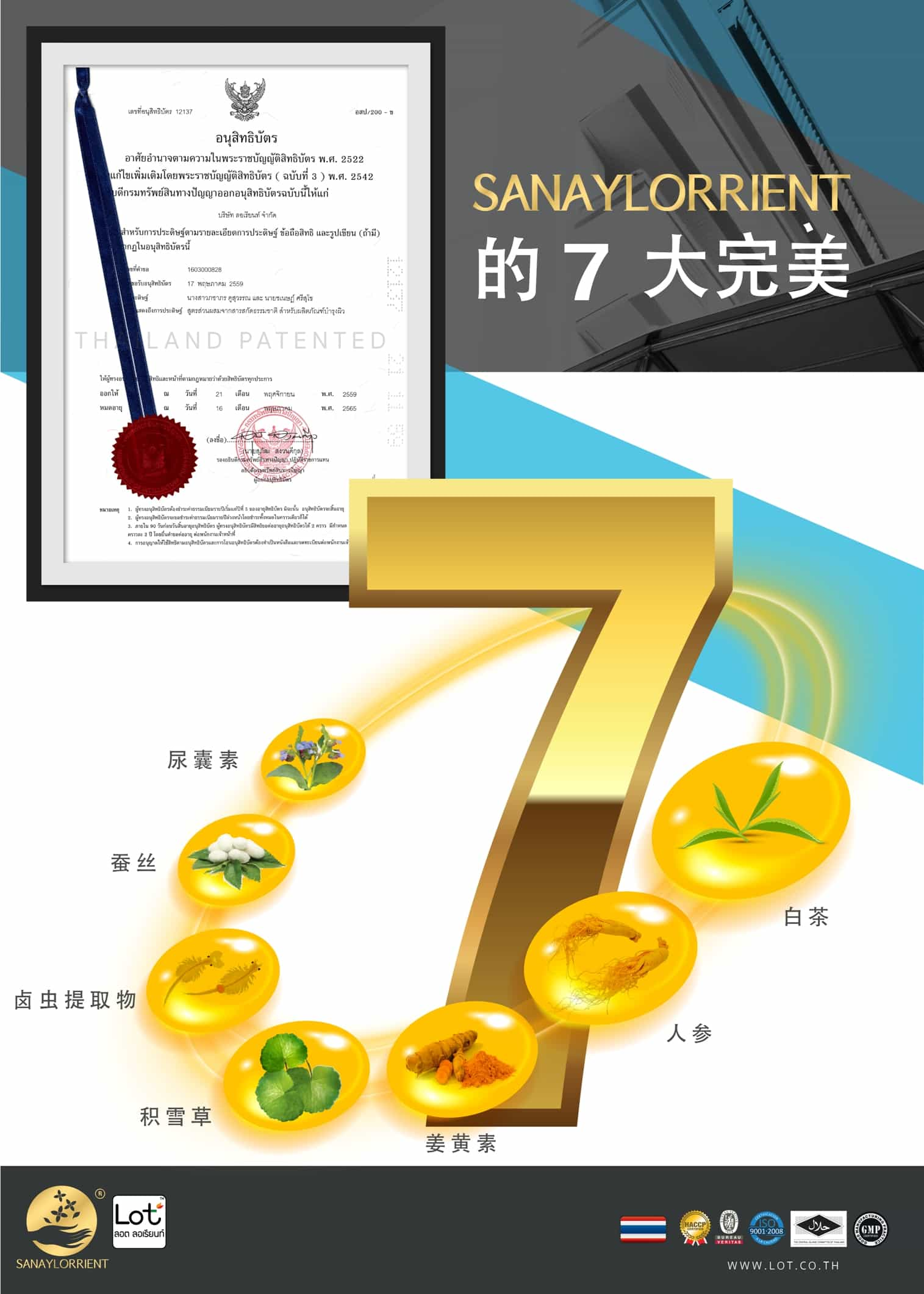 LOT cream ( 中 文 )
